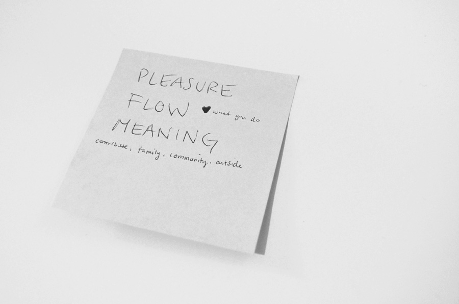 Pleasure. Flow. Meaning.